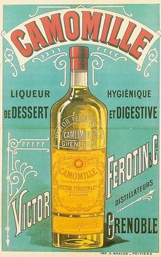 Camomille Liqueur- for the digestion