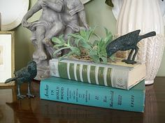 Old or damaged books repurposed as planters.