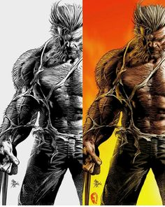 Logan comparision (black and white, and the painted) Wolverine Art, Logan Wolverine, Marvel Comics Art, Marvel Heroes, Wolverine Pictures, Comic Books Art, Comic Art, Old Man Logan, Marvel Entertainment