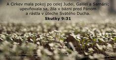 A Cirkev mala pokoj po celej Judei, Galilei a Samárii; upevňovala sa, žila v bázni pred Pánom a rástla v úteche Svätého Ducha. How To Dry Basil, Herbs, Herb, Spice