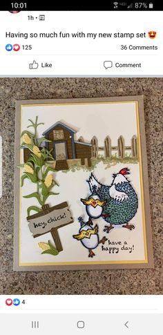 Masculine Birthday Cards, Birthday Greeting Cards, Greeting Cards Handmade, Card Tags, I Card, Farm Quilt, Christmas Baby Shower, Bird Cards, Stamping Up Cards