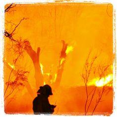 #sabresun fun with #blazecolour with Shaynna Blaze