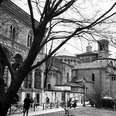 Ritorno alle origini... #milano#architecture#unimi#tree#milano_loves#vivomilano#milanodavedere#bestphotooftheday#bestpic#blackandwhite#photogrid by frizzipazzi