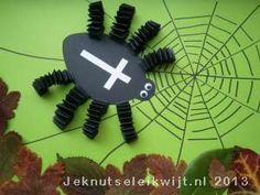 Tijdens de herfst komen de spinnen weer tevoorschijn. Kijk maar in de tuin of je een spin kunt vinden en bekijk de spin eens goed. Misschien zie je wel hoe een spin een spinnenweb aan het maken is. Je kunt ook zelf een spin knutselen van muizentrappetjes, een leuke herfstknutsel! Knip 16 smalle stroken papier, daarmee maak je de muizentrappetjes (kijk bij de knutsel muizentrappetje) Knip daarna het lijf en de kop van een spin. Teken met een zwarte stift een spinnenweb op een groen vel pap...