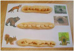 Помоги зверятам добраться до дома (сортировка крупы). Forest Animals, Kids Education, Woodland Animals