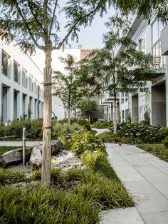 Galería de BIGyard / Zanderroth Architekten - 5                                                                                                                                                                                 Más