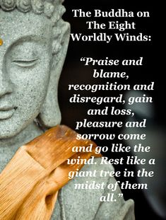 Praise and blame, recognition and disregard, gain and loss, pleasure and sorrow come and go like the wind - Buddha
