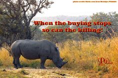 When the buying stops, so can the killing.  ~ #WhiteRhino