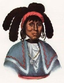 Chief Micanopy, the Creek/Seminole Indian for whom the town of Micanopy, Florida is named.