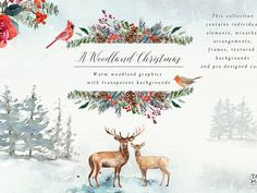A Woodland Christmas Graphic Set by Graphic Assets