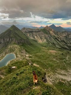 Out with the dog at Obertauern Adventure, Mountains, Landscape, Dogs, Nature, Travel, Scenery, Naturaleza, Viajes
