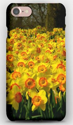 iPhone 7 Case Daffodils, Flowers, Plant, Many