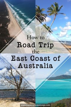 Backpacking Australia's East Coast for three-and-half weeks is EPIC. Our road trip itinerary show you what to do and see while exploring this iconic coast line. Read More: http://blankcanvasvoyage.com/australia/road-trip-east-coast-australia/