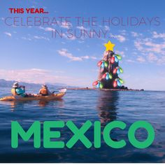 Take our Baja's Bounty cruise through the Mexico's Sea of Cortés this December!! http://usarivercruises.com/cruise/bajas-bounty/