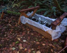 Using outdoor wood lined with plastic, I build this bath in which to submerge my hobbyhorse oyster mushroom nursery maple logs. Submerging the logs for 24 hours stresses the shrooms and causes them to fruit. Wild Mushrooms, Stuffed Mushrooms, Logs, Oysters, Nursery, Plastic, Bath, Fruit, Building