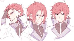 Reinhard - Alternate Hairstyles