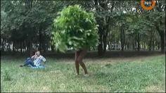 Hodajući grm - seksi skrivena kamera