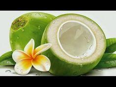 Coconut Chicken - Cooking Chicken In green Coconut In My Village - Healt...
