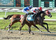 International Star wins the 2015 Louisiana Derby (G2) (photo: Lou Hodges/Fair Grounds)