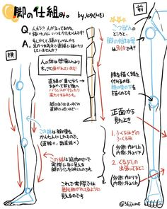 Learn To Draw Manga - Drawing On Demand Body Reference Drawing, Anatomy Reference, Drawing Skills, Art Reference Poses, Design Reference, Tutorial Draw, Anatomy Tutorial, Drawing Legs, Human Drawing
