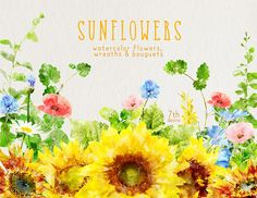 Watercolor Flowers Clipart  Sunflowers  Wedding Invitation