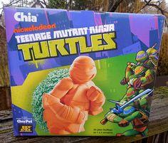 Teenage Mutant Ninja Turtles Chia Pet!