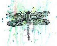 Image result for dragon fly zen tangle