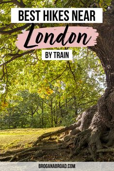 Hidden Gems in London's West End | Secret Spots in London's West End | Things to do in London's West End | One day itinerary in London's West End | Best places to visit in London's West End | Cutest places to see in London's West End | Best Photo Spots in London's West End | How to spend one day in London's West End #London #WestEnd #UK #England #travel