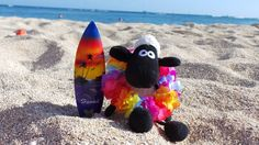 Surf's up for Shaun in this pic, shared by Nada Samanta Seliškar‎.