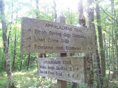 900 miles: Gregory Ridge and Gregory Bald trails