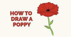 Learn to draw a poppy. This step-by-step tutorial makes it easy. Kids and beginners alike can now draw a great looking poppy flower. Poppy Flower Painting, Poppy Drawing, Flower Step By Step, Step By Step Drawing, Drawing Tutorials For Kids, Drawing Tips, Learn To Draw Flowers, Directed Drawing, How To Draw Steps