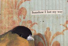 troubled birds - Google-Suche