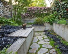 Jardin moderne avec une clôture en béton