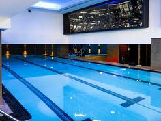 lap pool Swimming Pool Designs, Swimming Pools, Neuroscience, Indoor, Sport, Outdoor Decor, Home Decor, Centre, Swiming Pool