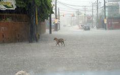 Powerful Hurricane Matthew a threat to Haiti Jamaica Cuba