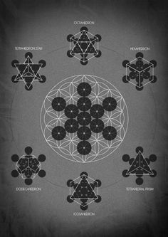 chaosophia218:  The Flower of Life is the modern name given to a geometrical figure composed of multiple evenly-spaced, overlapping circles. They are arranged to form a flower-like pattern with a sixfold symmetry.Within the Flower Of Life's concentric circle pattern lies another pattern - the Fruit of Life. This symbol is composed of 13 circles taken from the design of the Flower of Life.The Fruit of Life is said to be the blueprint of the Universe, containing the basis for the design for…