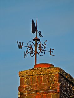 Weather Vane - i like the fanciness/old school look