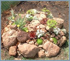 Monumental Landscaping Companies In Northern Va