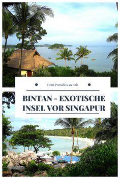 Kilometerlang erstreckt sich der feine, weiße Sandstrand in der Bucht. Das türkisfarbene Meer schwappt in sanften Wellen ans Ufer und wo der Strand endet, beginnt ein dichter Wald aus Mangroven und Palmen. Bintan ist das Urlaubsparadies, von dem viele träumen.