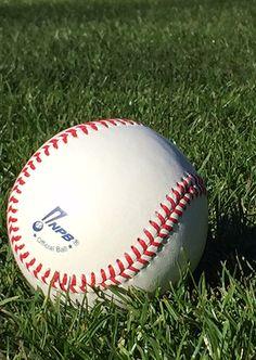 Nippon Professional Baseball Organization