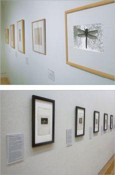 Gallery Display Labels | Museum Display Cards | Absolute #labelholders #absolute #artdisplay www.artdisplay.com
