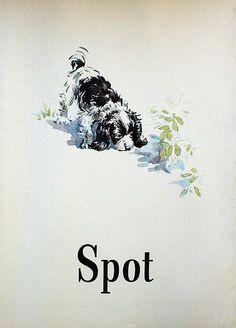 Dick and Jane saw Spot run!  I saw Spot run.  Did you see Spot run?