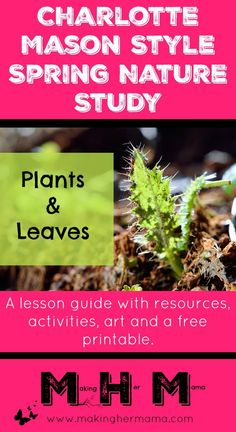 A Charlotte Mason style Spring Nature Study lesson on plants. This lesson plan features activities, art, language arts and a free printable. Come check it all out!