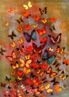 Lily Greenwood Signed Giclée Print - Heather Butterflies (A4/A3/A2) | Lily Greenwood