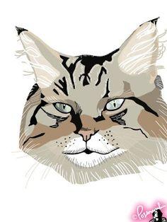 illustration © POSEMANIKIN  #kitty #cat #animal #illustration #art
