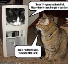 1000 images about funny nerd errors on pinterest funny computer