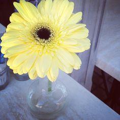 Pretty #mynexttwenty  (at Henri Cafe)