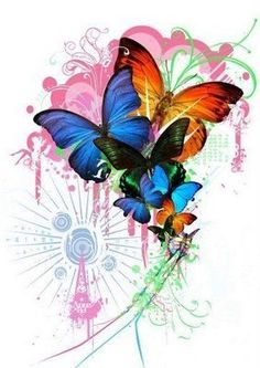 Explosion of Butterfly