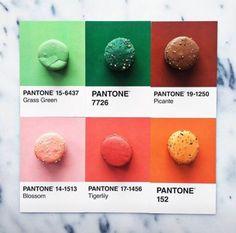 (3) Etiqueta #PANTONE en Twitter