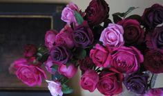 【Rose Gallery】オリジナルローズ:市川バラ園